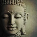 Situaciones sociales, compasión y gratitud