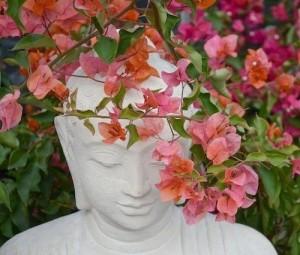 buda-flores