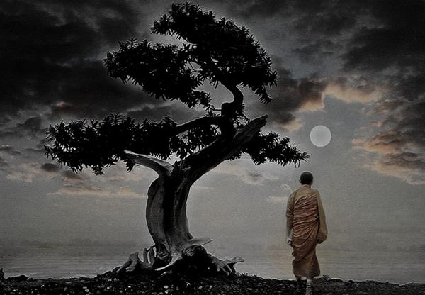 Zen-Moon