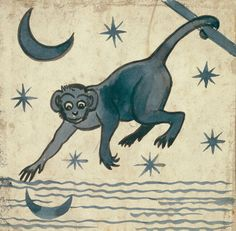 monkey-moon